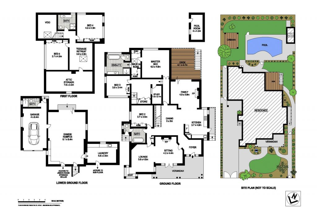 Floor Plan - 31 Powell Street, Killara
